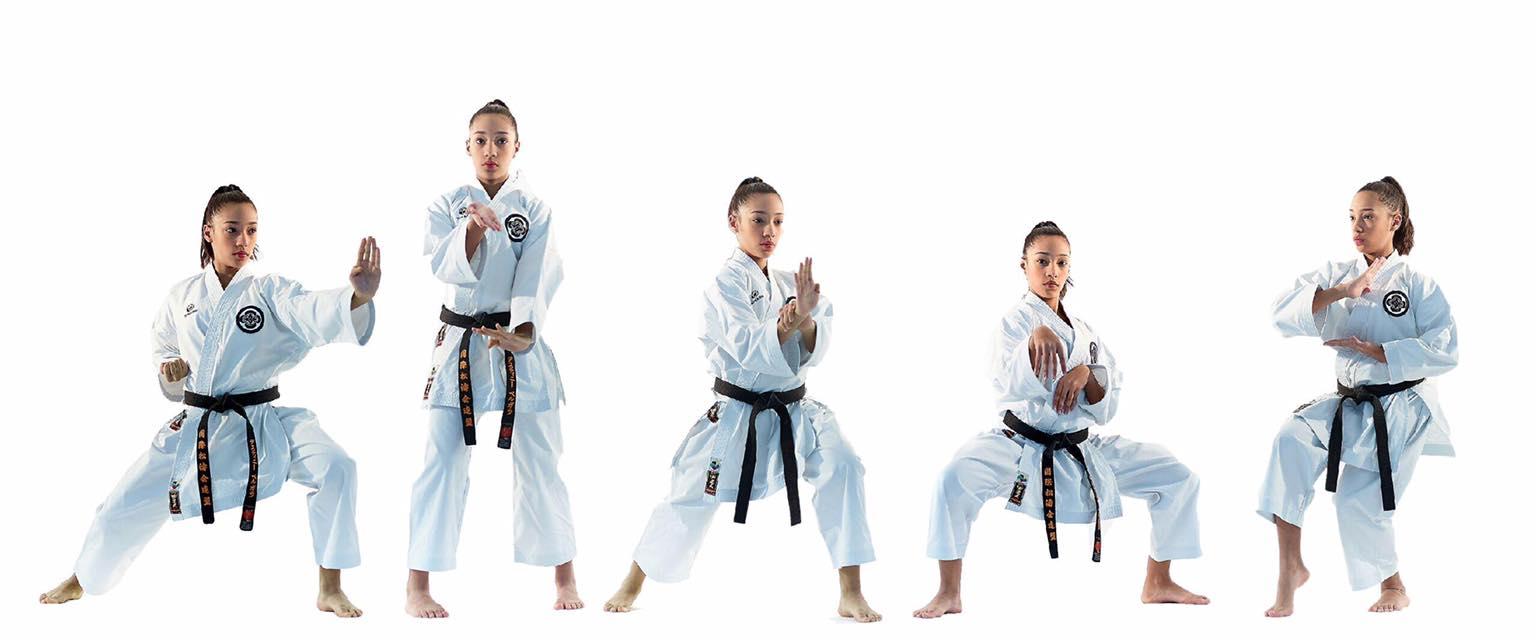 karate belt levels