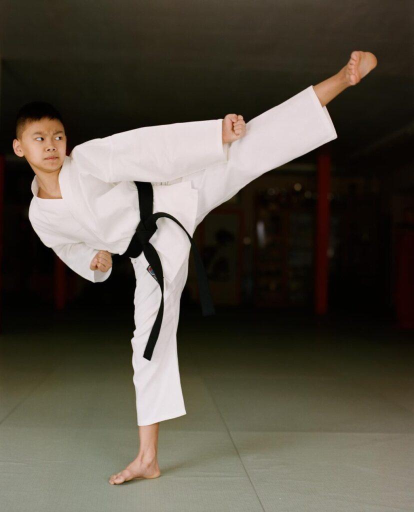virtual martial arts training