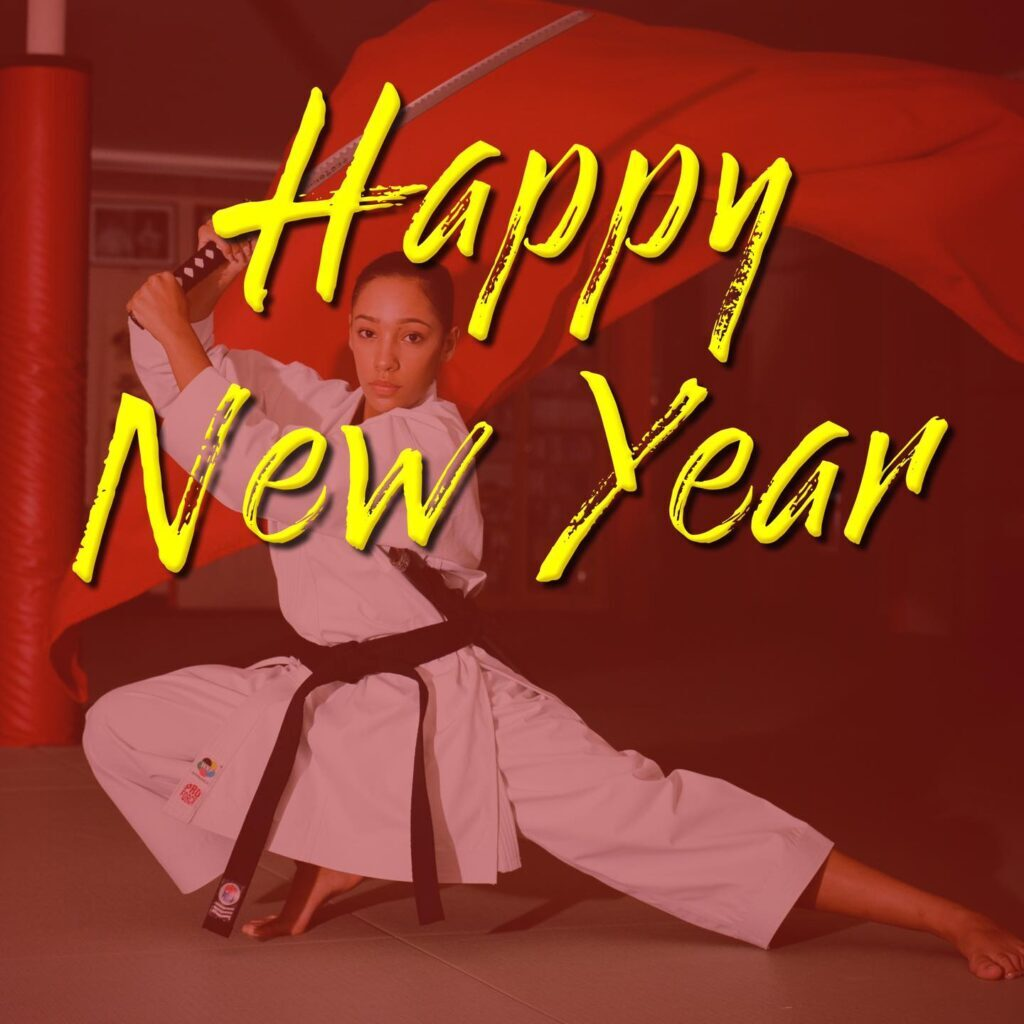 new years resolutions martial arts