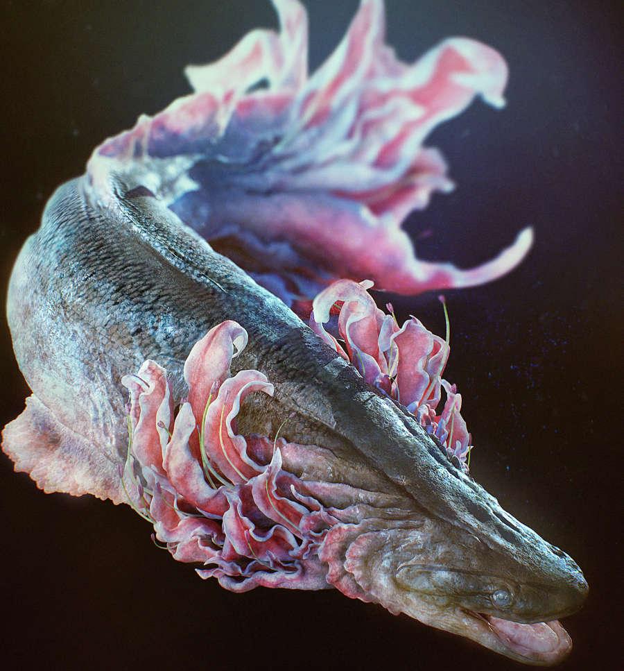 Yuuki Morita - frilled fish - artwork