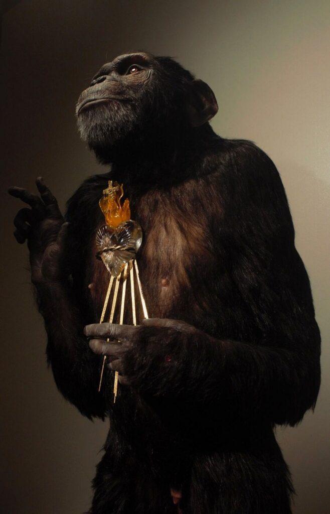 Honourable Mention Beautiful Bizarre Art Prize 2021, Sadhdh Mowlds