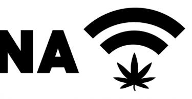 www.marijuanamoment.net