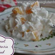 Coconut Ambrosia Salad Dairy & Gluten Free