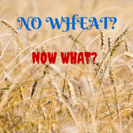 You're Diagnosed Celiac or Gluten Intolerant  – Now What?