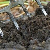5 Organic Amendments Your Garden Needs
