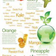 Health Benefits of Juicing