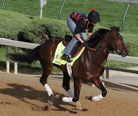 Orb working out at Churchill Downs before the 2013 Kentucky Derby