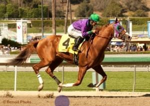San Felipe Stakes in  2014 at Santa Anita Park. Photo © Benoit Photo
