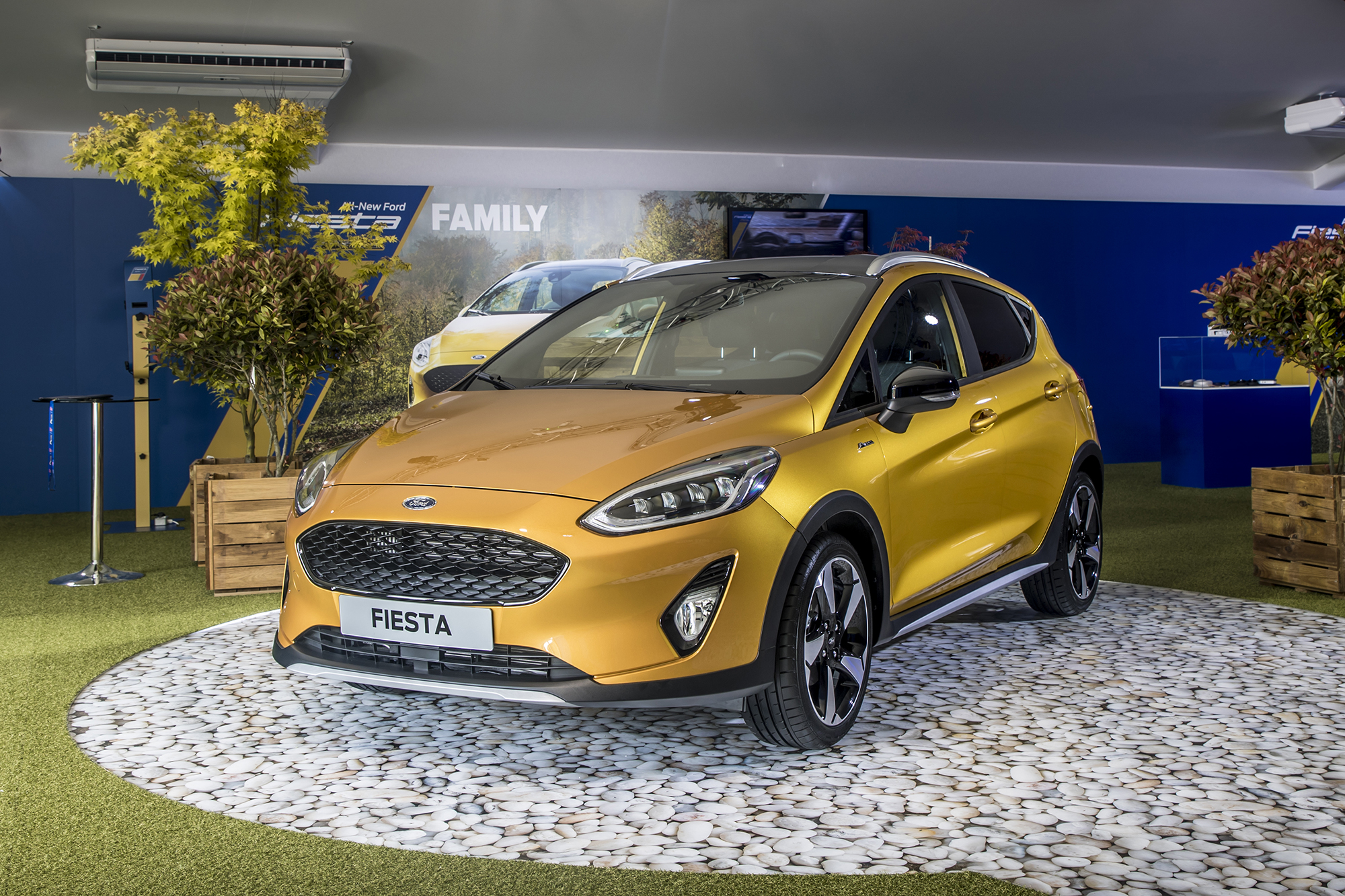 Ford Fiesta Experience 2019