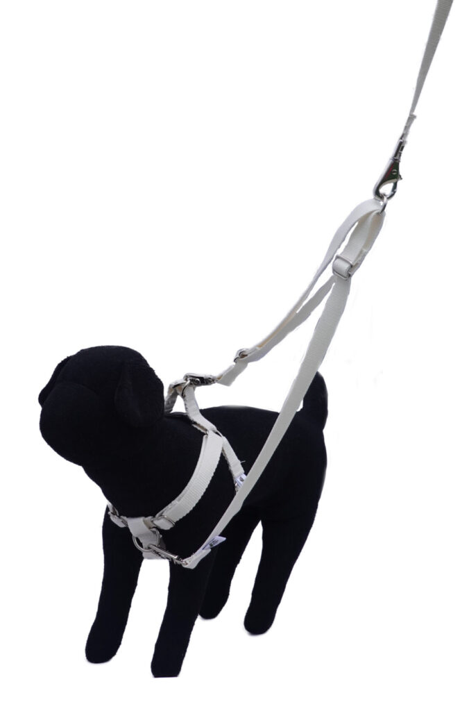 Dual Clip Harness with Tandem Leash Accessory and Leash
