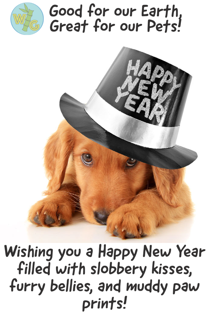 Wishing you a Happy New Year filled with slobbery kisses, furry bellies, and muddy paw prints!