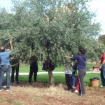 Een unieke, authentieke ervaring op het Toscaanse platteland