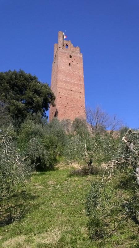 San Miniato - Rocca di Federico II (450x800)