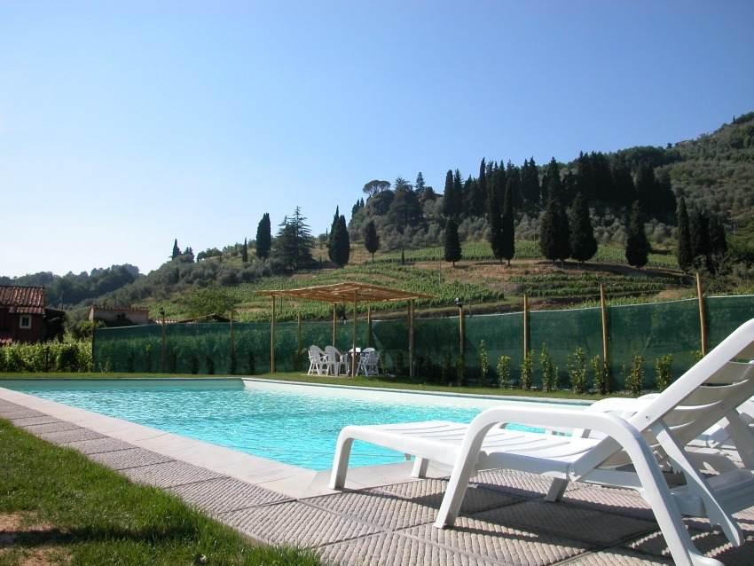 Het zwembad aan de voet van de wijngaarden