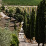 Het evenement Eroica Montalcino