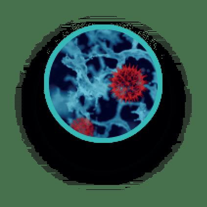 Inmunology