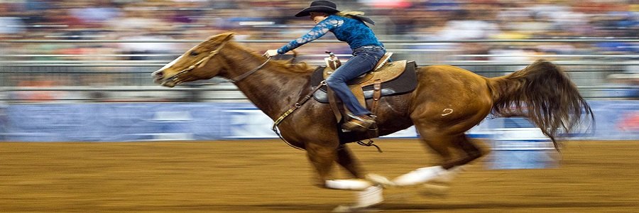 Lindsay Sears wins the Cinch Super Shootout: North Amercia's Champions barrel racing competition on the final day of the Houston Livestock Show and Rodeo on Sunday, March 18, 2012, in Houston. (Smiley N. Pool / Houston Chronicle )