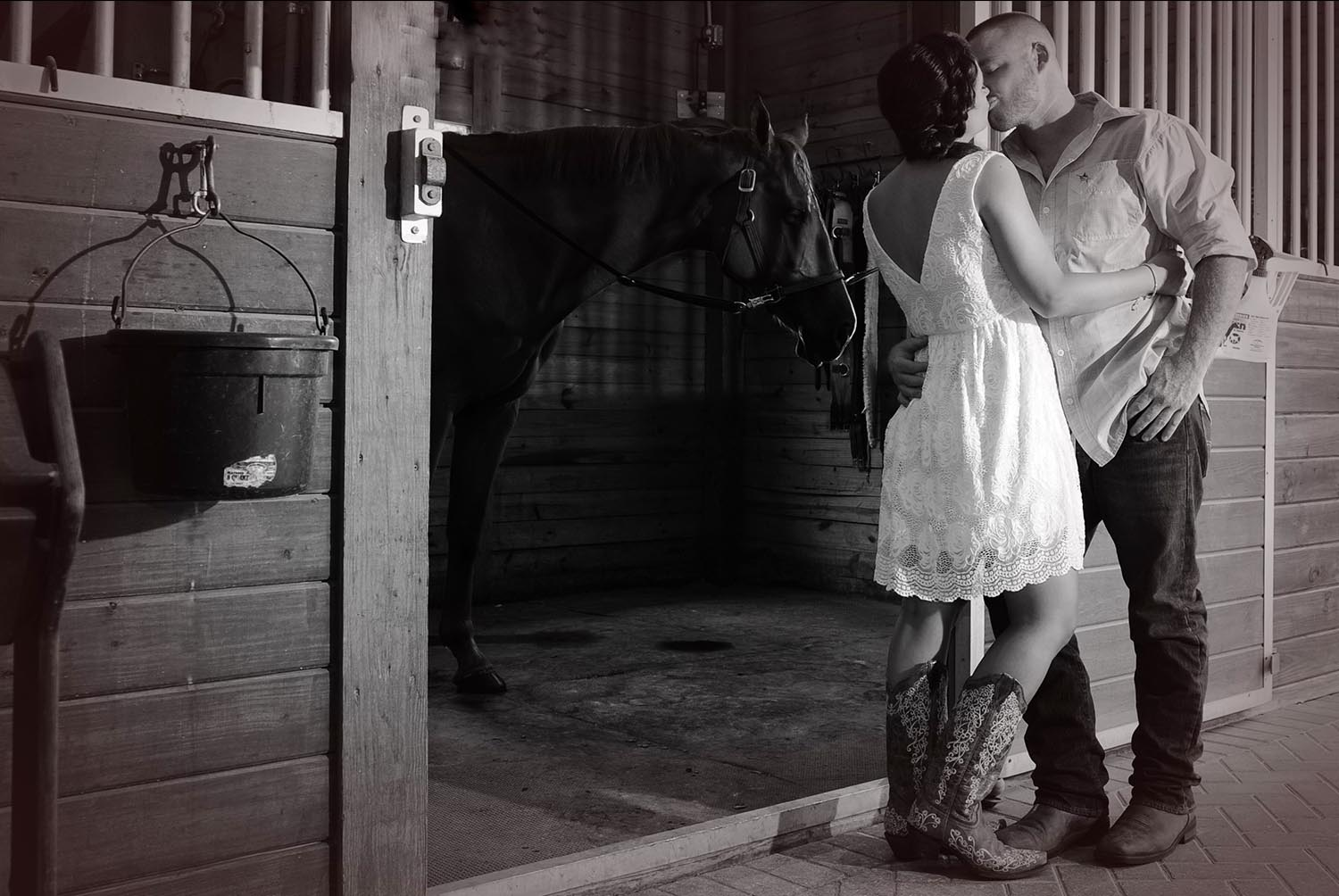 engagement Farm shoot