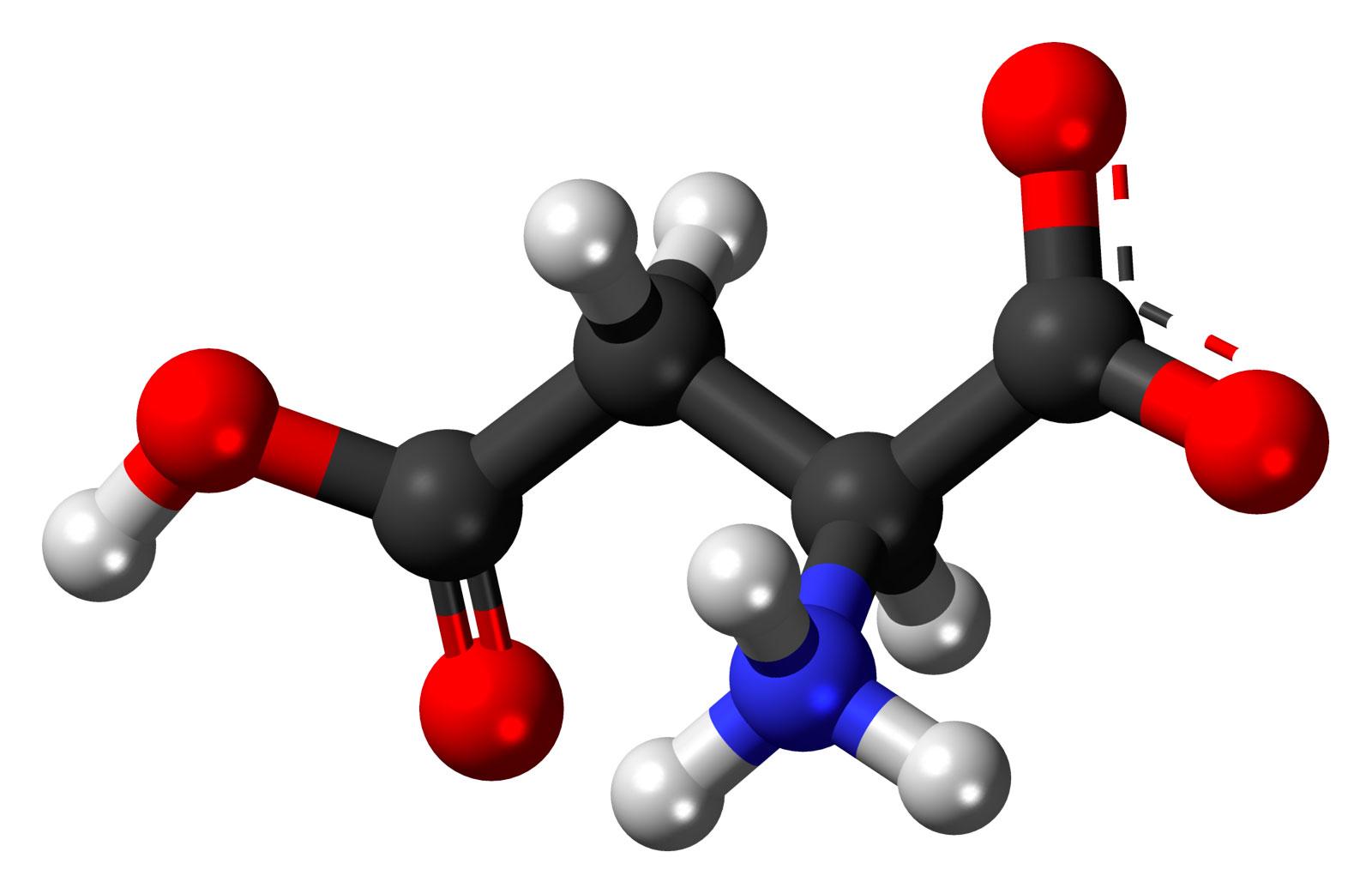 amino acids quiz