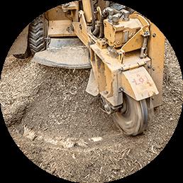 Stump Removal Image