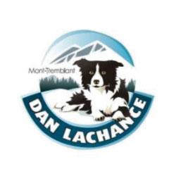 dan-lachance250px