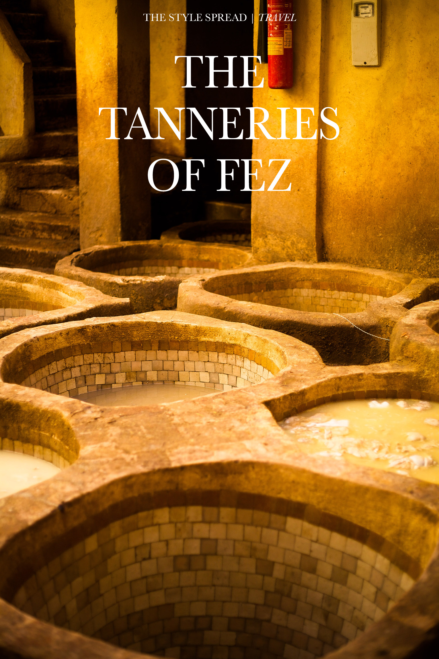 The Leather Tanneries of Fez