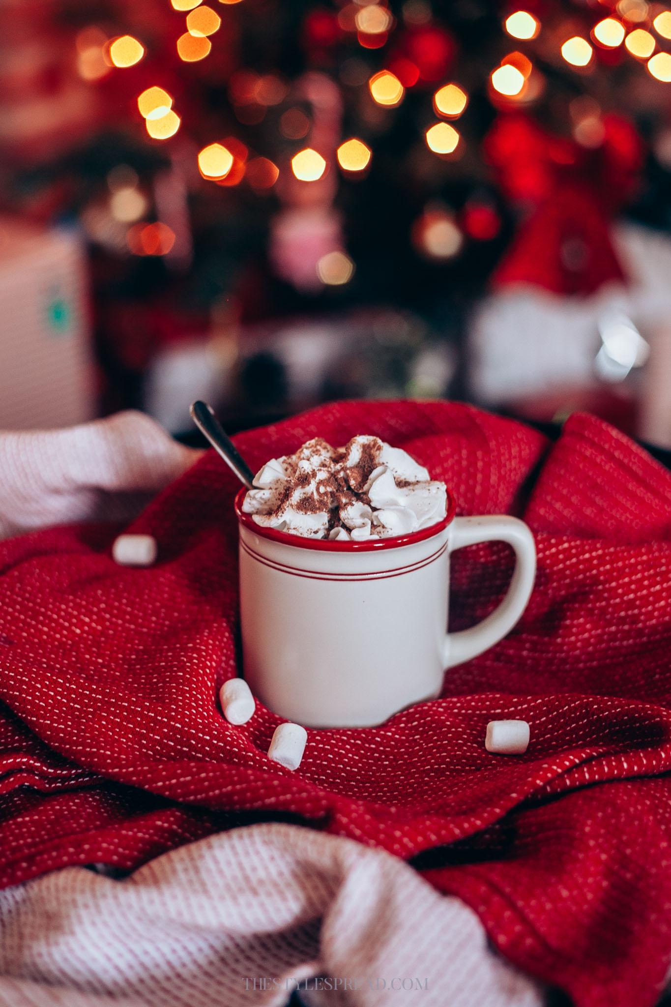 Winter Hot Chocolate Recipe