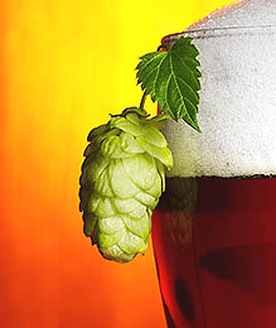 Dry Hopping A Beer