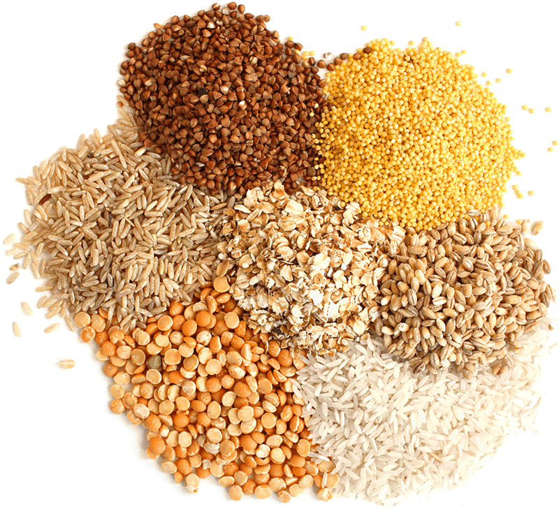 Gluten Free Grains For Home Brewing