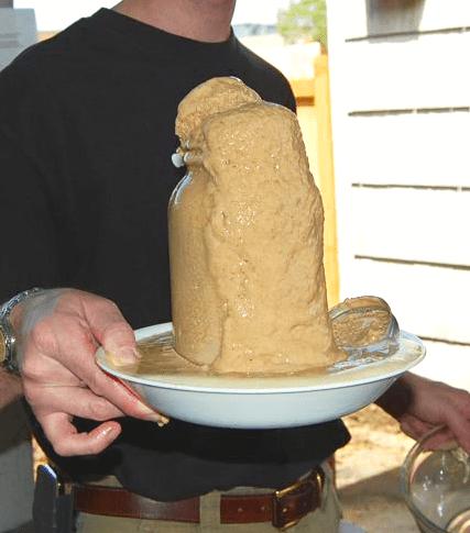 Homebrewer Reusing Beer Yeast
