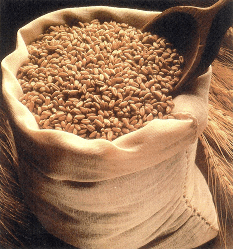 Malted Wheat For Home Brewing
