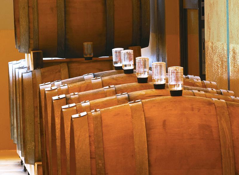 Wines Going Through Malolactic Fermentation