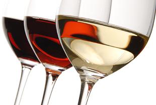 Wine Sediment Fermentation