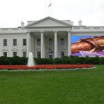 White House leaks