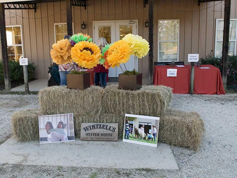Flowers on top of hay bales