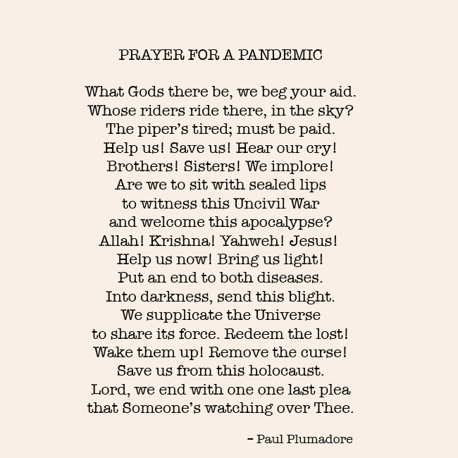 Prayer for a Pandemic