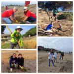 Outdoor Volunteer Day: Alta Vicente @ Rancho Palos Verdes   California   United States