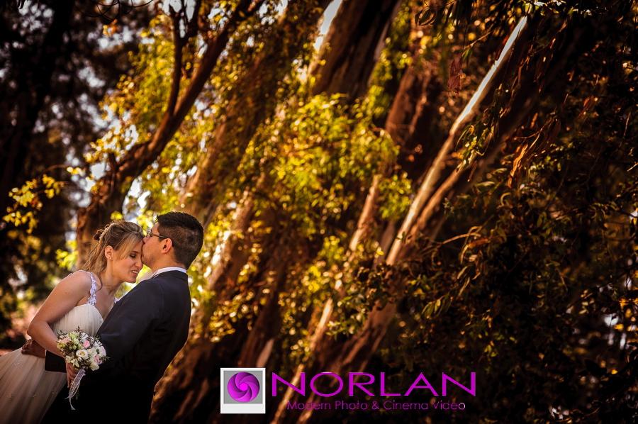 Casamiento-lorena-ricardo-finca-madero-norlan_21