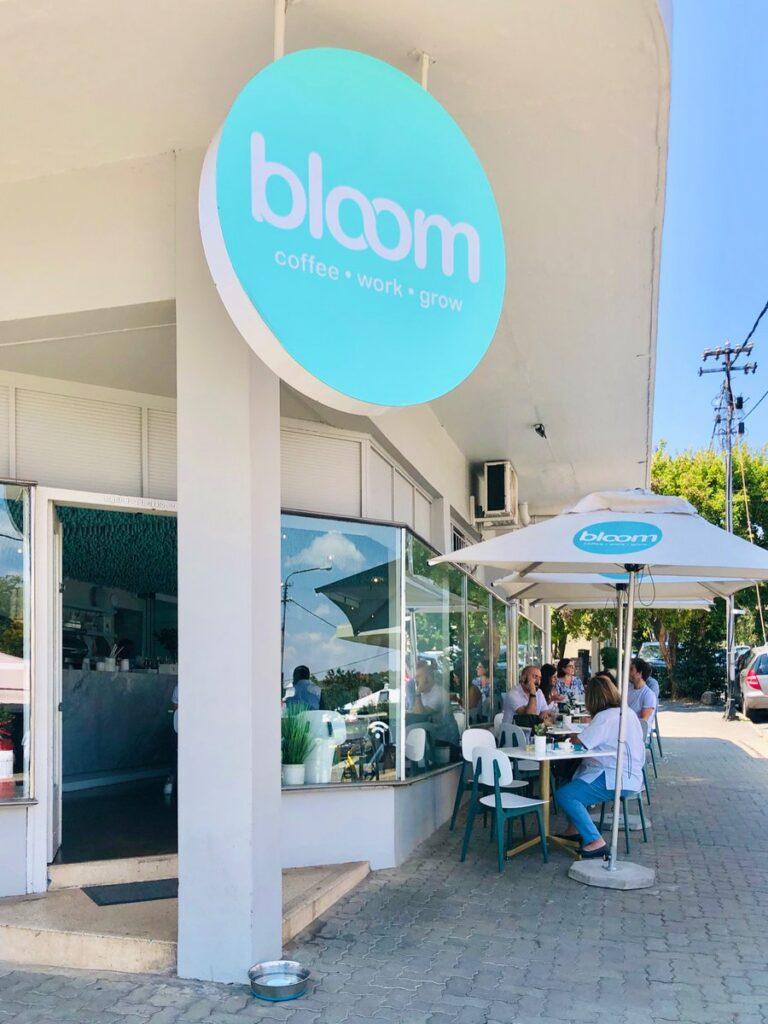 Bloom Parkhurst Front