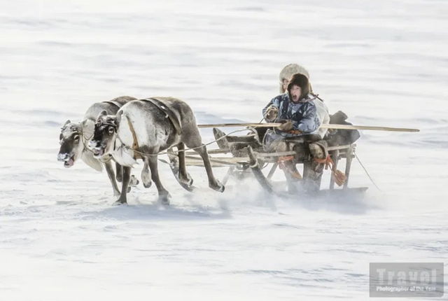 snow man in sleigh
