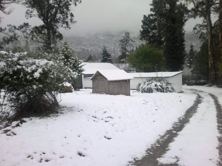 Gumtree Snow Hello Joburg Featured