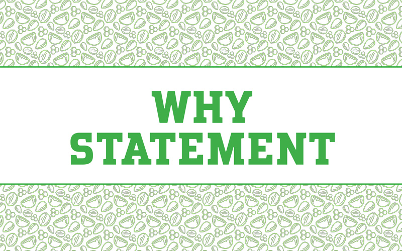 Within Without Branding Deck — Why Statement