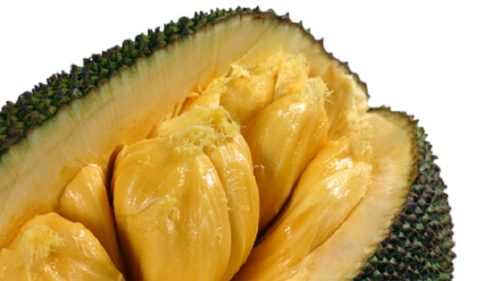 Scientists Find Jackfruit to be a Powerful Cancer Killer