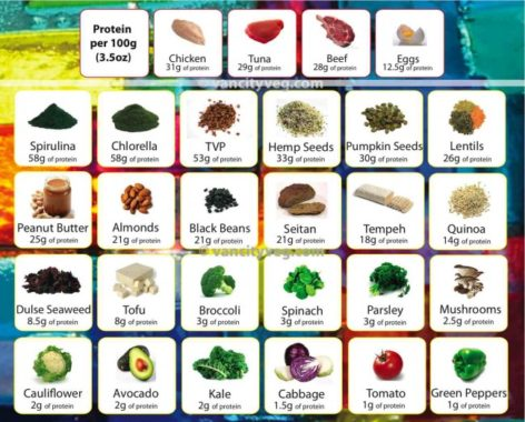 7 Plant-Based Protein Sources If You Don't Want to Eat Meat!