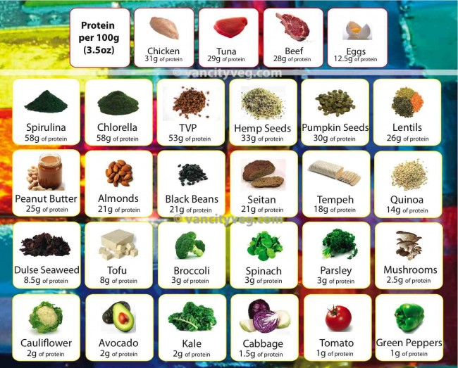 protein-source