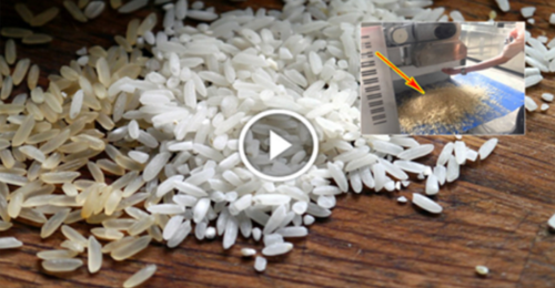 Fake Rice Made of Plastic Is Being Sold Across the World