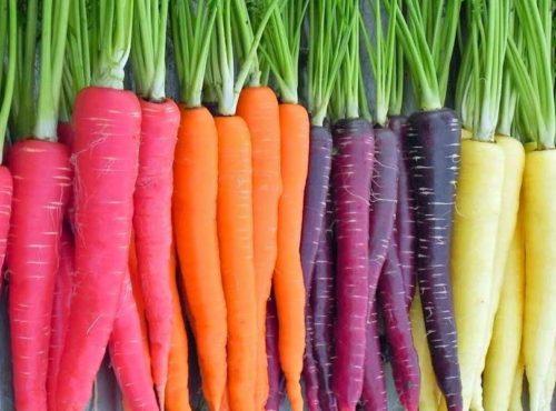 Health Benefits of Carrots