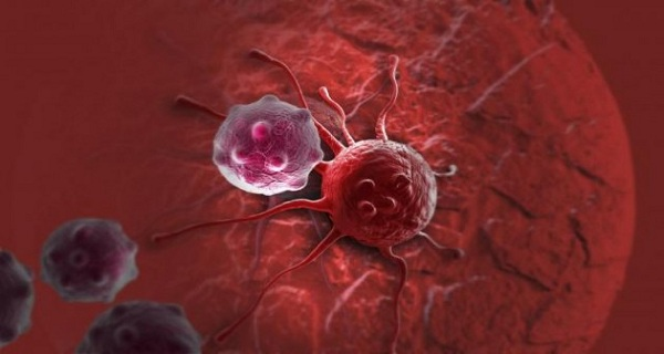 Cancer Can be Cured in 6 Weeks – Find Out How
