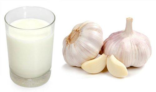 The Best Remedy – Garlic and Milk (Garlic Milk)