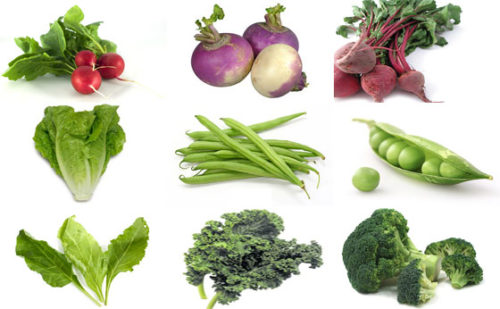 Eat this Vegetable and Fix Everything Wrong With your Body